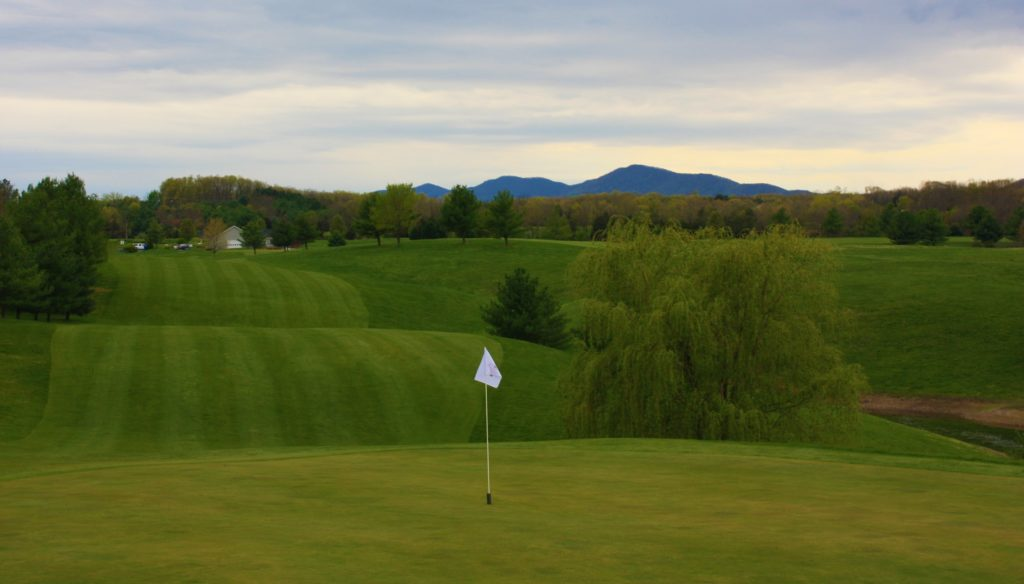 #10 Green and fairway back