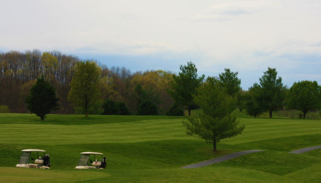 #9 Fairway with carts B